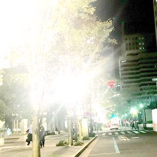 (改良お願いします)LEDライトは視覚過敏のチアキには、まぶしすぎです